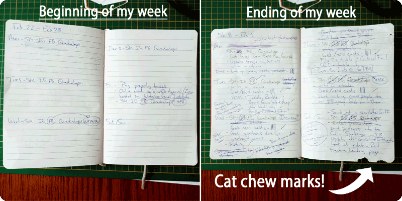 Ramstar games - My Day planner at the beginning and ending of my week complete with cat chew marks!